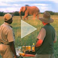 botswana_explorer_expedition