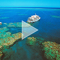 barrier_reef