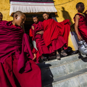 Monks-ladakh